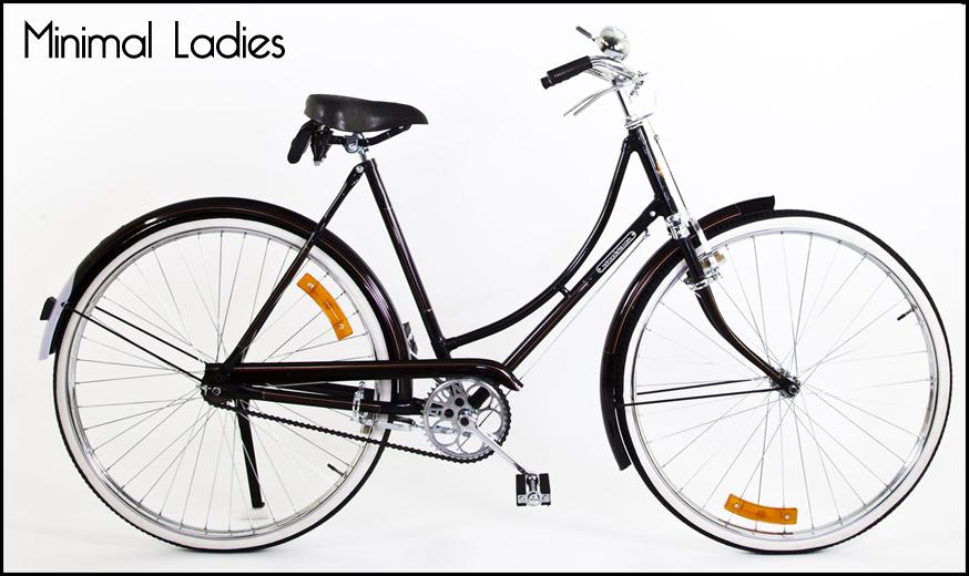 Bicicletta Retro Vintage