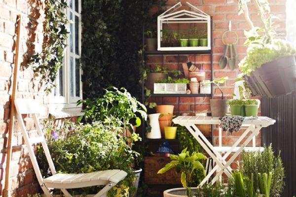 Idee per arredare terrazzo for Arredare un terrazzo con piante e fiori